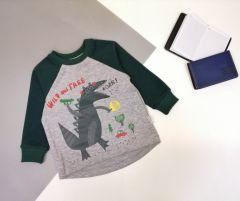 Трикотажний світшот для дитини (сірий з зеленим), Robinzone КФ-722