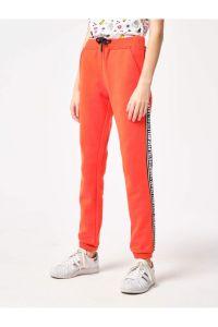 Спортивні штанята з махровою ниткою всередині, Reporter 203-0117G-17-660-1