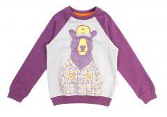 Трикотажный свитшот для мальчика-(фиолетовый),  Robinzone КФ-488