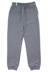 Трикотажные штаны для мальчика (серые), Robinzone ШТ-171/172